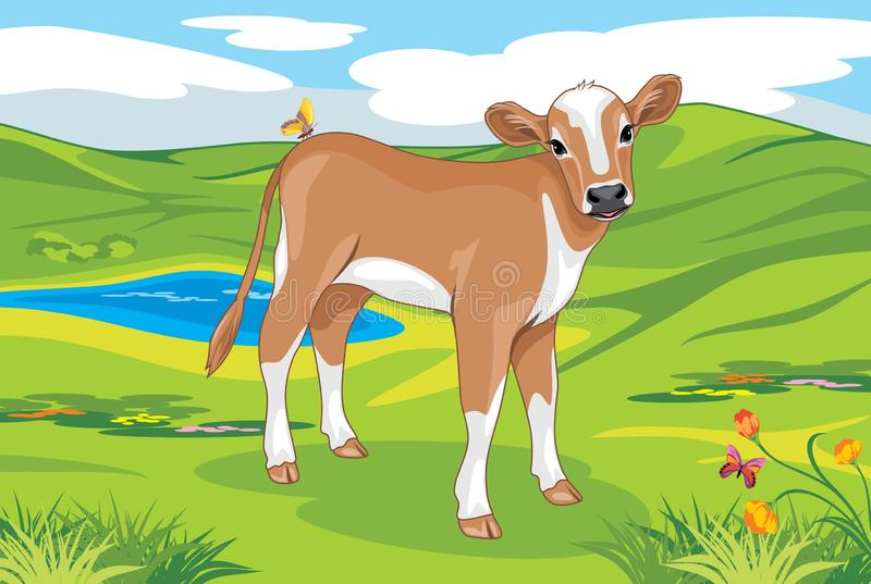 Cute calf on a landscape background royalty free stock image