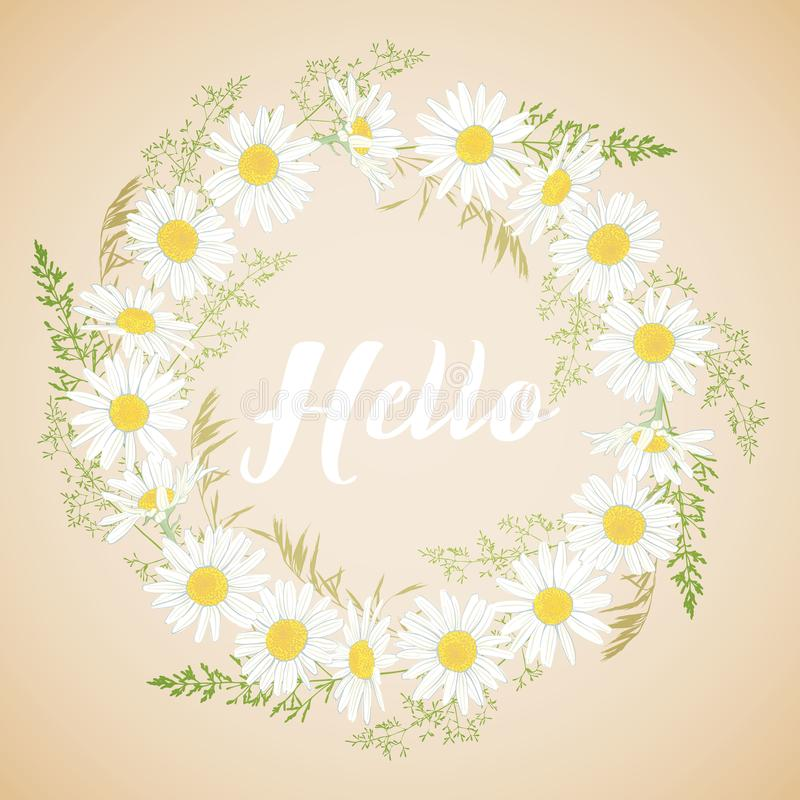 Cute card with Chamomile flowers wreath. Cute card with Chamomile flowers wreath on light background. Hello spring and summer. Vector illustration royalty free illustration