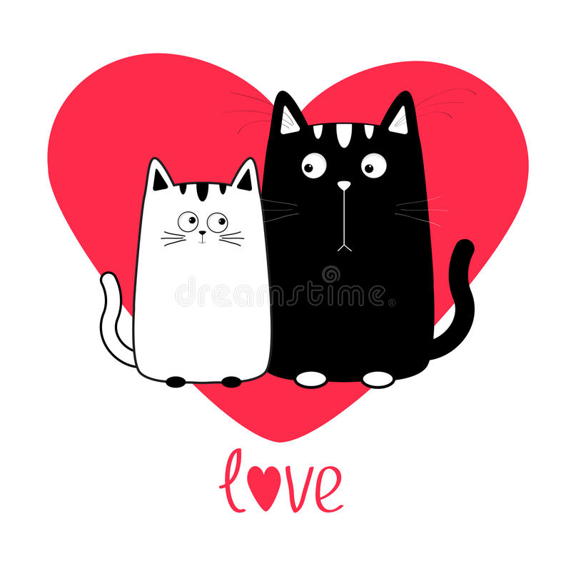 Girl online dating loves cats