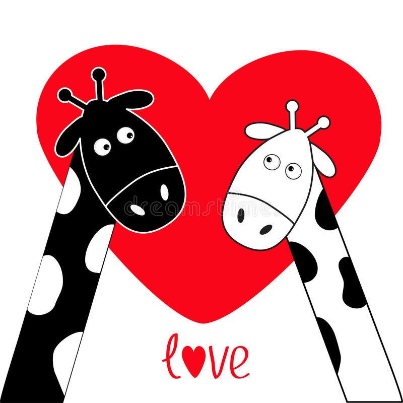 Cute cartoon black white giraffe boy and girl Big red heart. Camelopard couple on date. Funny character set. Long neck. . Happy fa. Mily. Word Love Greeting card royalty free illustration