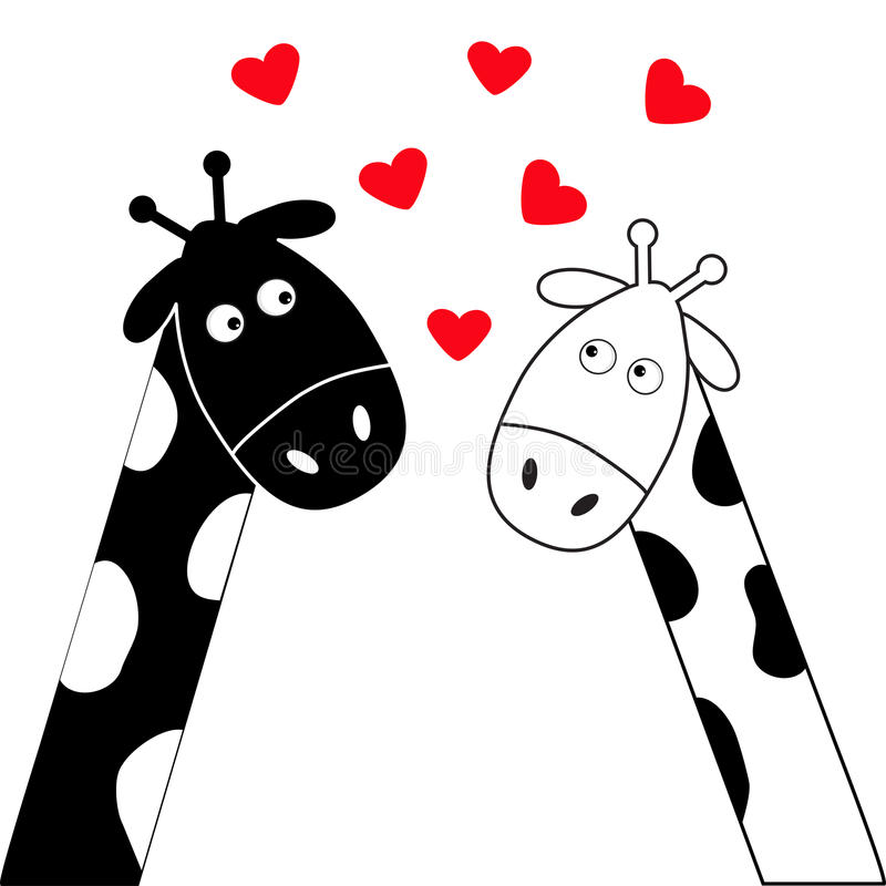 Cute cartoon black white giraffe boy and girl. Camelopard couple on date. Long neck. Funny character set. Happy family. Love greet. Ing card with hearts. Flat royalty free illustration
