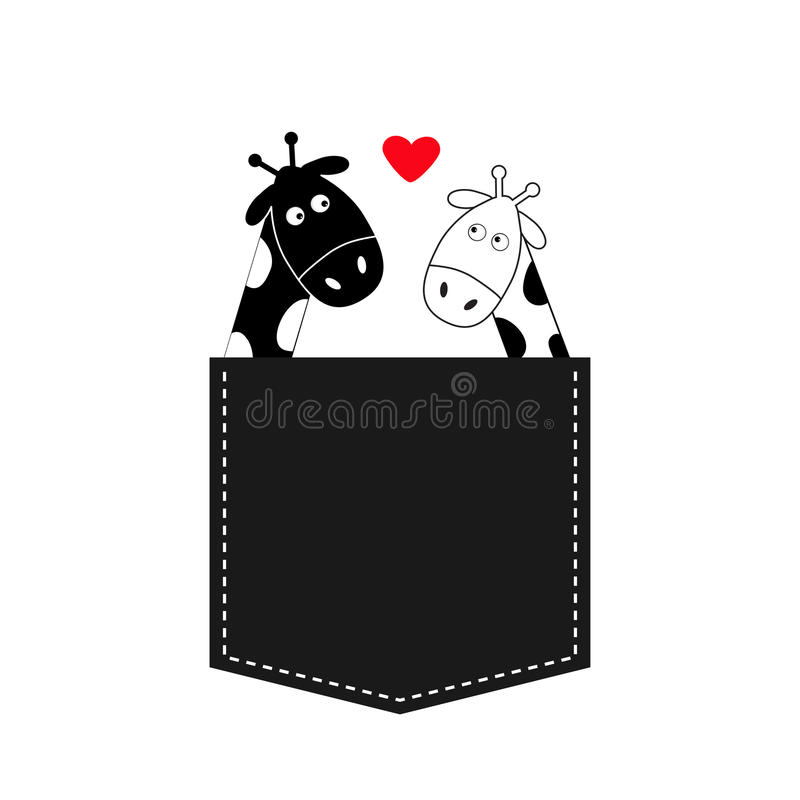 Cute cartoon black white giraffe in the pocket Boy girl with heart. Camelopard couple on date. Long neck. Funny character set. Happy family. Love greeting card vector illustration