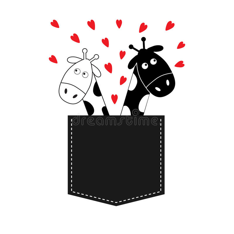 Cute cartoon black white giraffe in the pocket boy and girl with little hearts. Camelopard couple on date. Long neck. Funny character set. Happy family. Love royalty free illustration