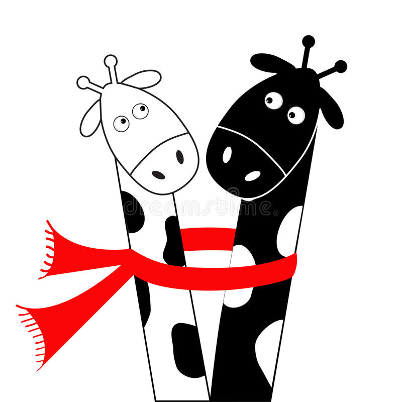 Cute cartoon black white giraffe wearing red scarf. Boy girl couple. Camelopard on date. Long neck. Funny character set. Happy. Family. Love greeting card. Flat royalty free illustration