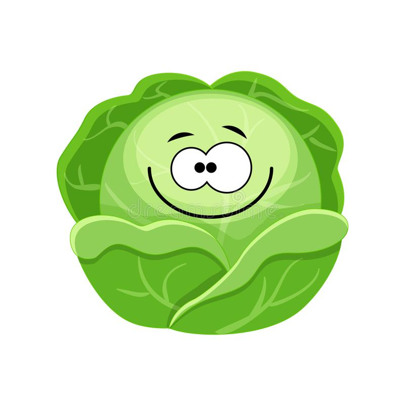 Cute cartoon cabbage character vector illustration isolated on royalty free illustration