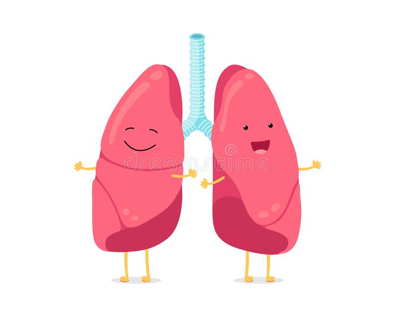Cute cartoon funny lungs character. Strong smiling lung. Human respiratory system happy internal organ mascot. Healthy vector illustration