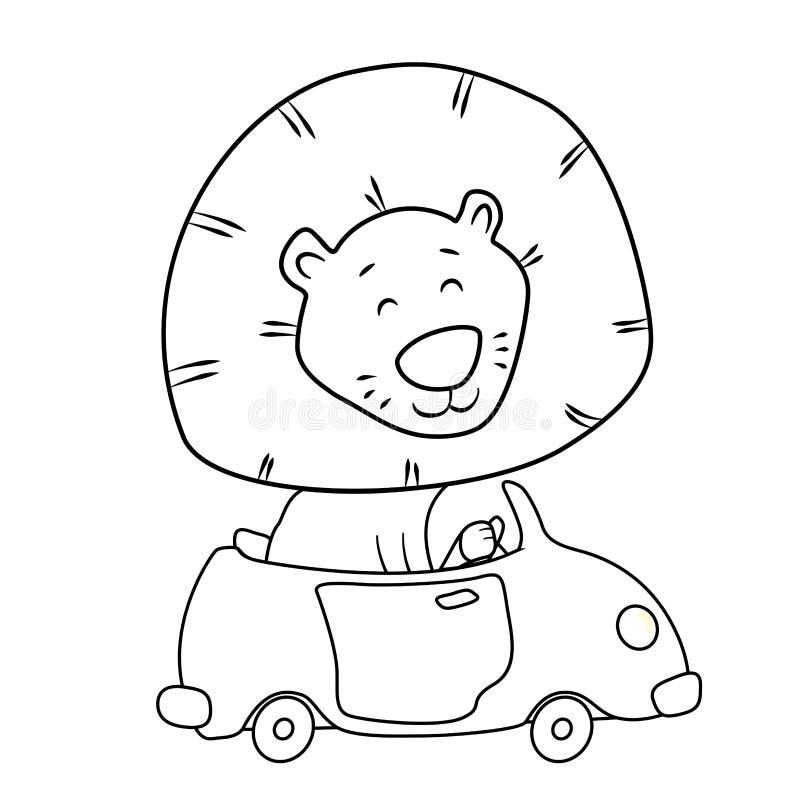Cute cartoon lion driving a car stock images