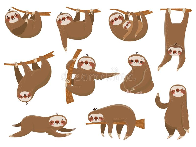 Cute cartoon sloths. Adorable rainforest animals, mother and baby on branch, funny sloth animal sleeping on jungle tree vector illustration