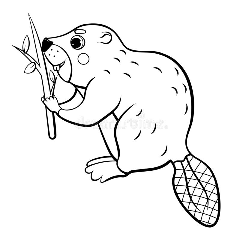 Cute Cartoon Wild Beaver With A Tree Branch Vector Coloring Page Outline.  Coloring Book Of Forest Animals For Kids. Isolated On Stock Vector -  Illustration Of Page, Colouring: 176765312