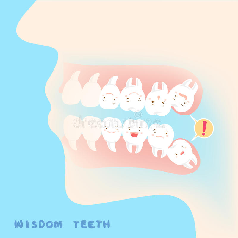 Cute cartoon wisdom teeth stock illustration
