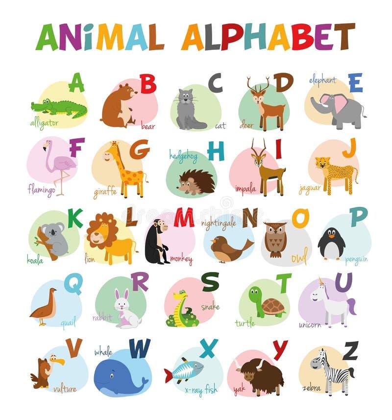 Cute cartoon zoo illustrated alphabet with funny animals. English alphabet. vector illustration