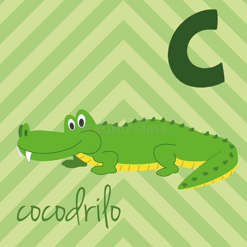 Cute cartoon zoo illustrated alphabet with funny animals. Spanish alphabet: C for Cocodrilo. Learn to read. Isolated Vector illustration stock illustration