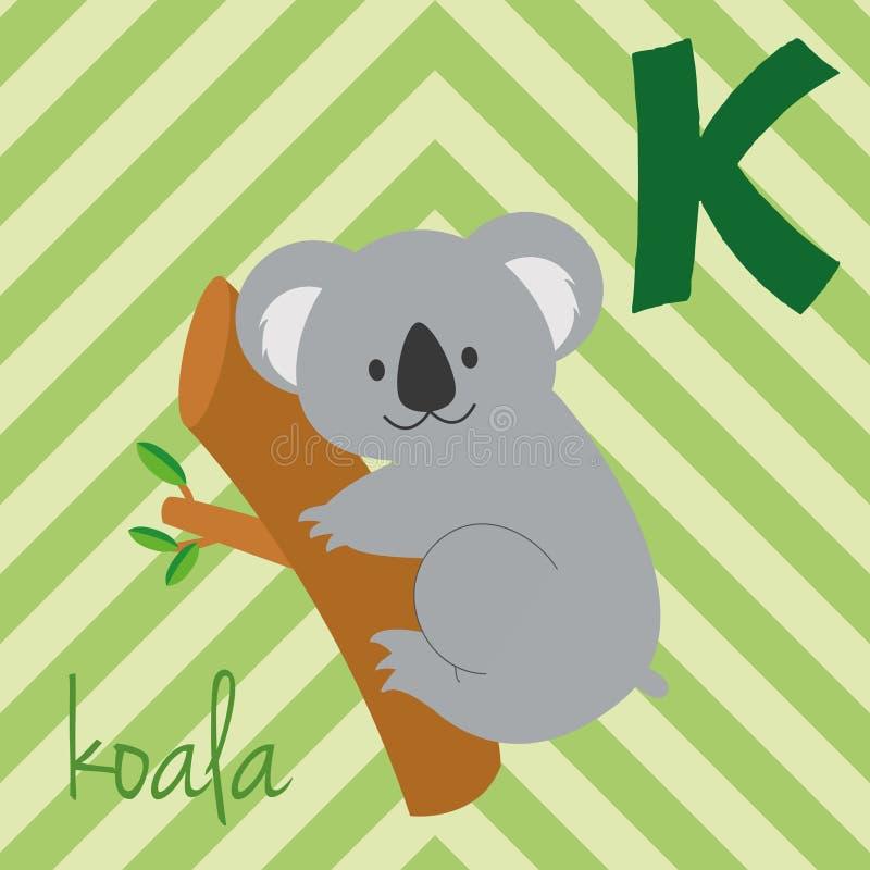 Cute cartoon zoo illustrated alphabet with funny animals. Spanish alphabet: K for Koala. vector illustration