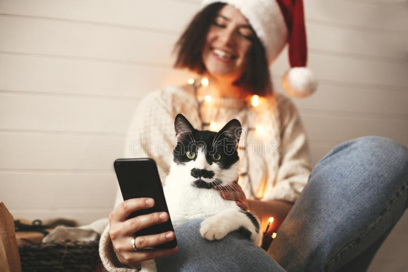 Cute cat looking at phone screen with funny emotions and sitting on happy girl legs in christmas lights. Young hipster woman in stock photos