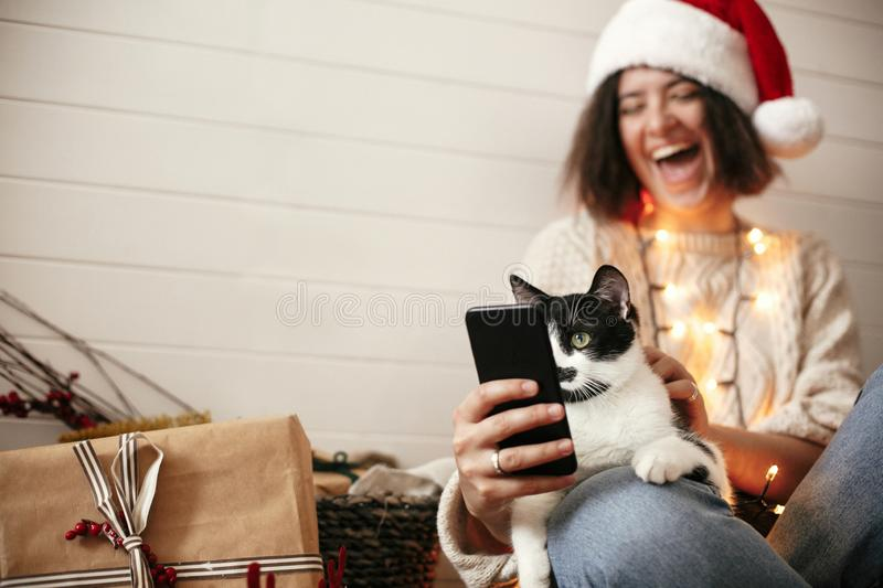 Cute cat looking at phone screen with funny emotions and sitting on happy girl legs in christmas lights. Young hipster woman in royalty free stock photos