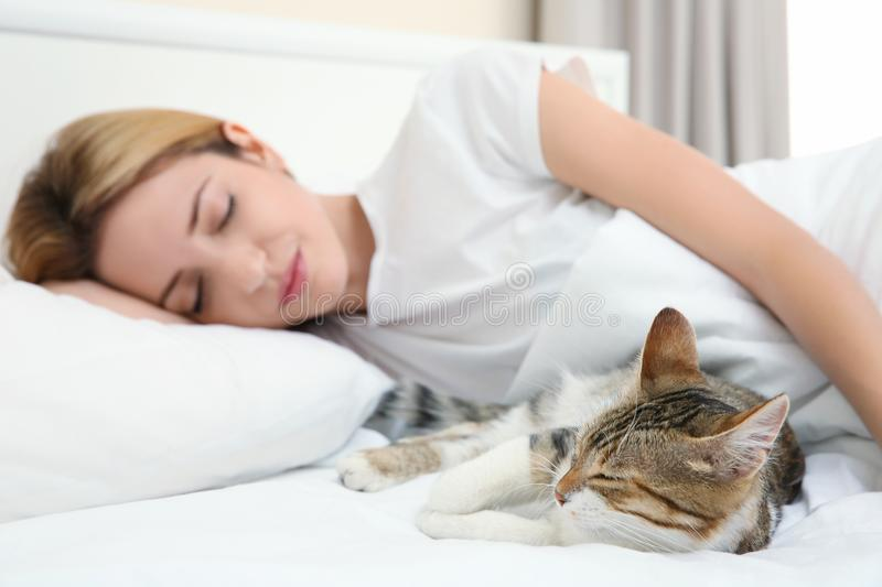 Cute cat and young woman relaxing stock image