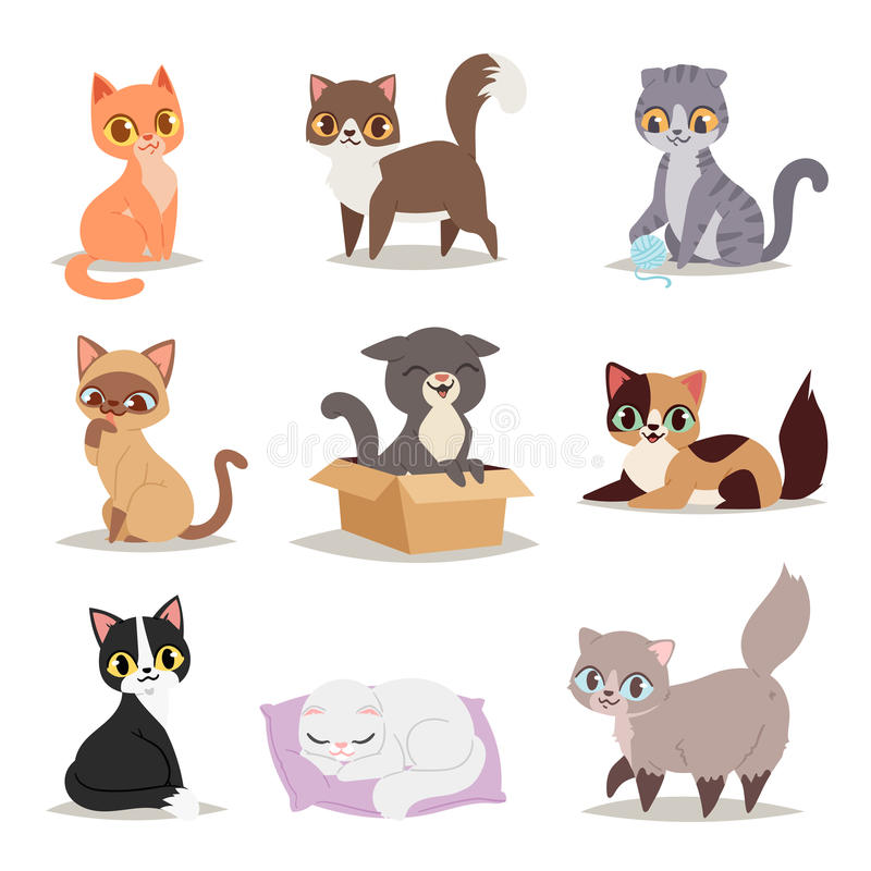 Cute cats character different pose vector royalty free illustration