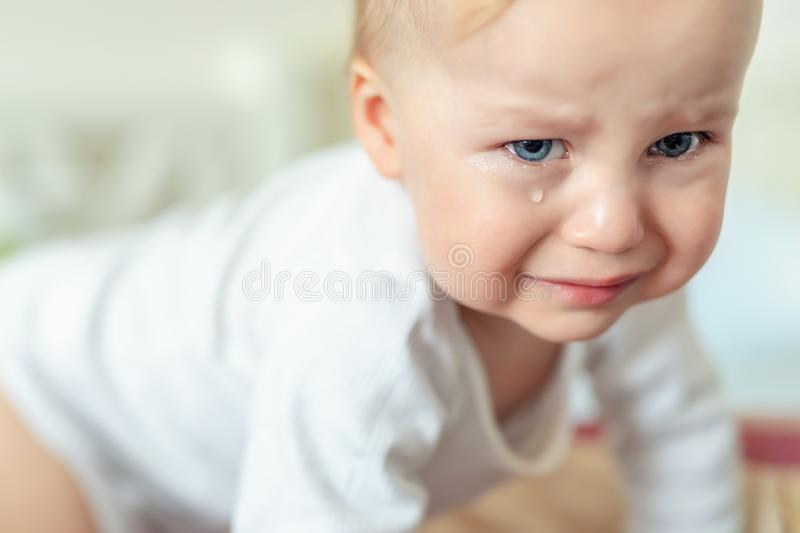 Cute caucasian blond toddler boy portrait crying at home during hysterics. Little child feeling sad. Little actor acting sadness royalty free stock images