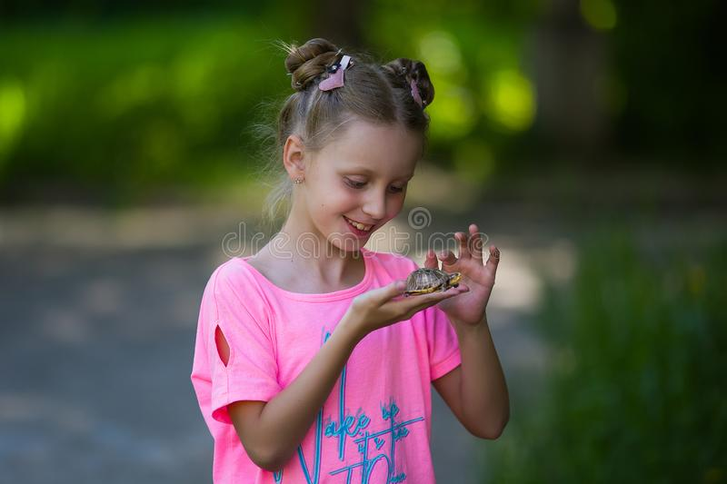 Cute caucasian child girl holding and playing with turtle with curious and fun. She is not scared to hold it on hand stock photography