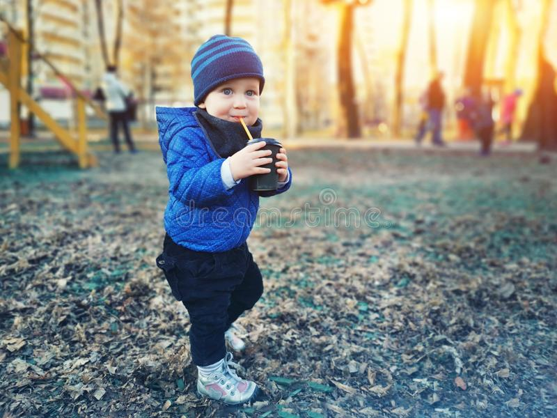 Cute caucasian toddler boy in casual clothes walking in city park holding paper cup and sipping warm drink. Adorable child having royalty free stock images