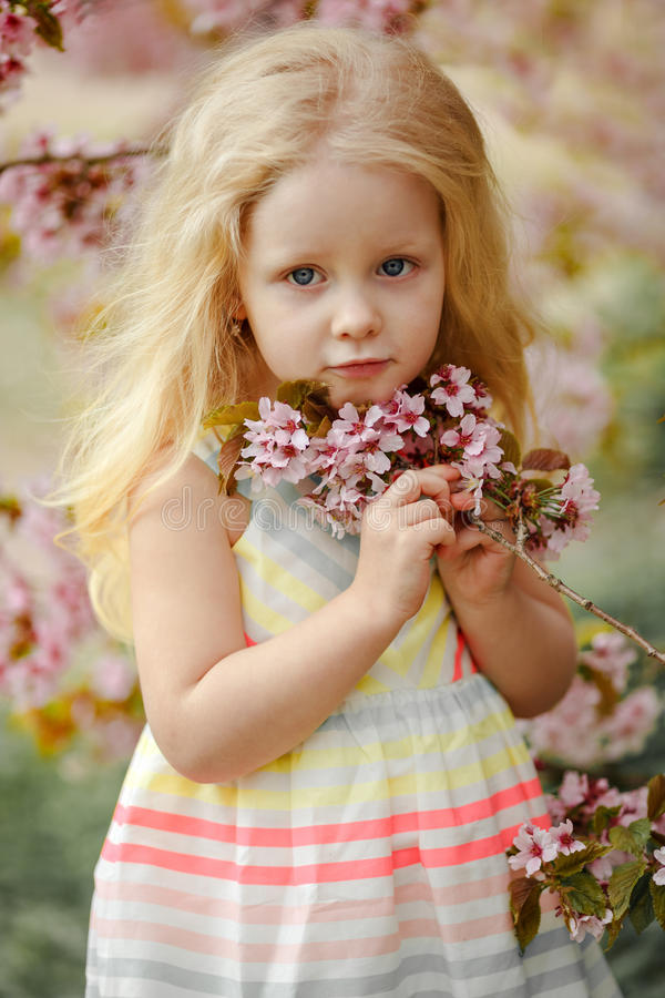 A cute charming blonde girl with lush hair on a pink sakura spring background royalty free stock image