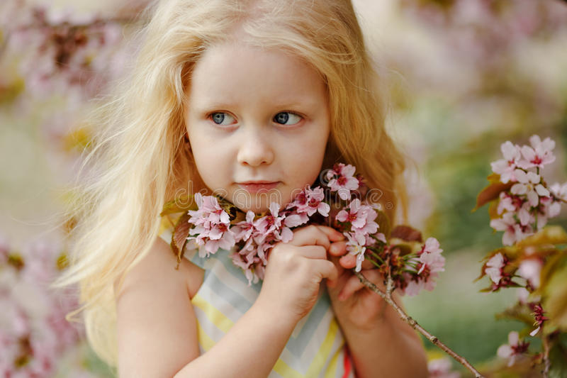 A cute charming blonde girl with lush hair smiling on a pink sakura spring background royalty free stock images