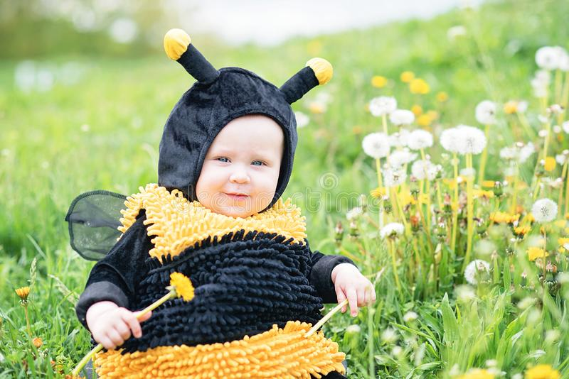 cute and cheerful portrait of little child sitting in blooming flowers of dandelion in yellow bee costume royalty free stock photography