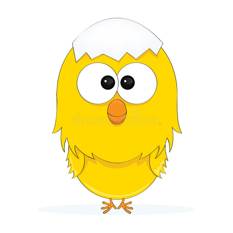 A Cute Chick royalty free stock photography