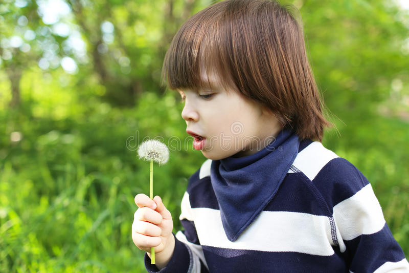 Cute child with blowball stock photography