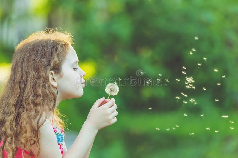 Cute girl blowing dandelion in spring park. Cute child blowing dandelion in spring park. Healthy, medical concept royalty free stock photography