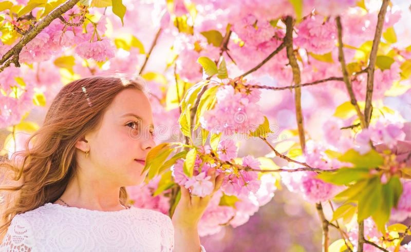 Cute child enjoy aroma of sakura on spring day. Girl on smiling face standing near sakura flowers, defocused. Perfume. And fragrance concept. Girl with long stock photos