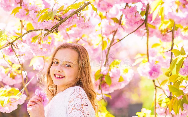 Cute child enjoy aroma of sakura on spring day. Girl on smiling face standing near sakura flowers, defocused. Girl with. Long hair outdoor, cherry blossom on stock photos