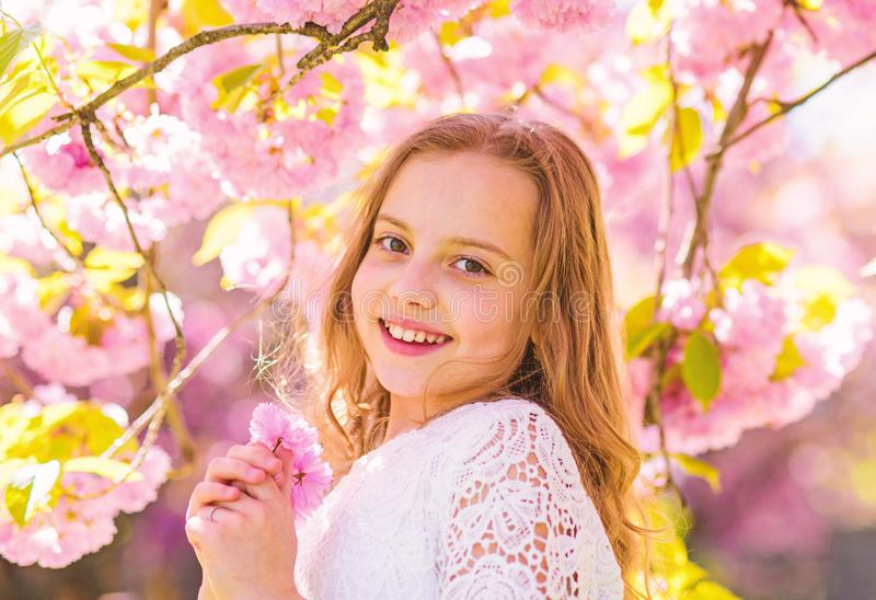 Cute child enjoy aroma of sakura on spring day. Girl on smiling face standing near sakura flowers, defocused. Girl with. Long hair outdoor, cherry blossom on stock image