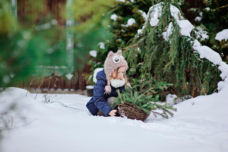 Cute child girl playing in winter snowy garden with basket of fir branches royalty free stock photos