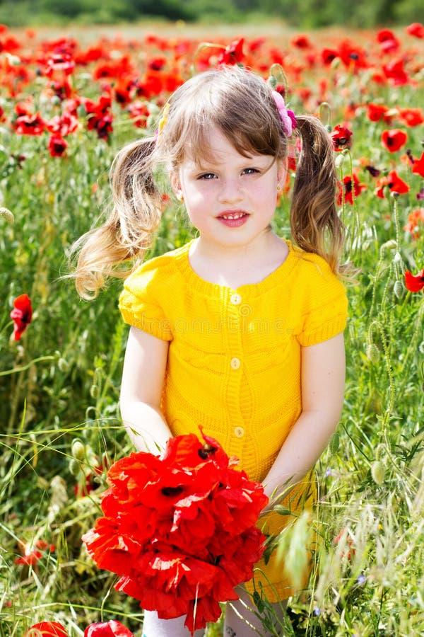 Cute child girl in poppy field stock photos