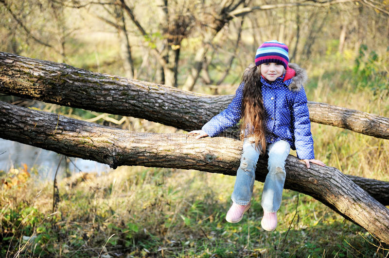 Cute child girl sitting on a tree branch stock image