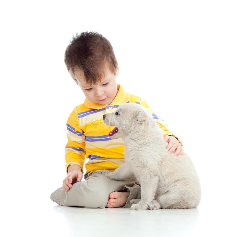 Cute child playing with a puppy. Adorable boy playing with a puppy stock photo