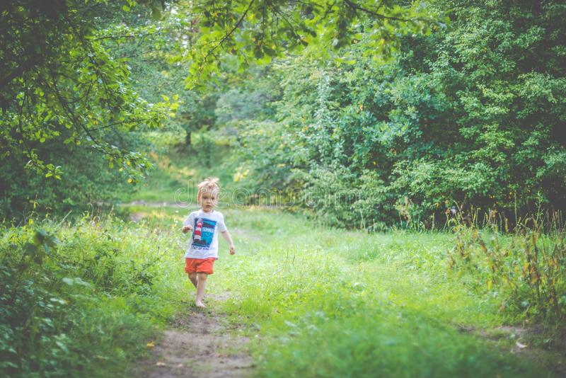 Cute child running in forest. Kid in nature stock photo