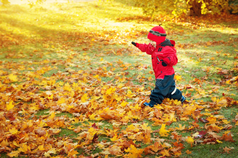 Cute child running on the lawn covered with yellow leaves. Boy having fun outdoors in autumn stock image