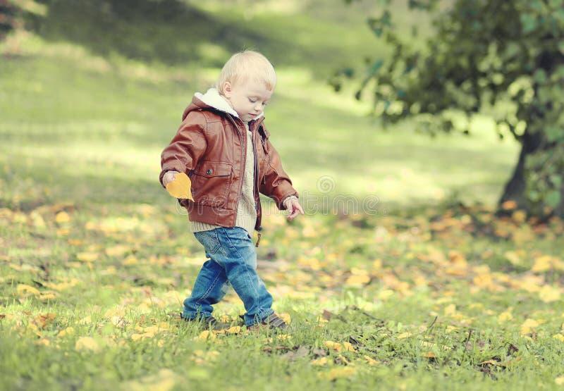 Cute child walks in autumn park royalty free stock photos