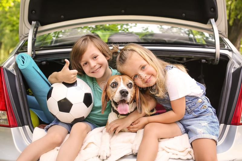 Cute children with dog sitting in car trunk royalty free stock images