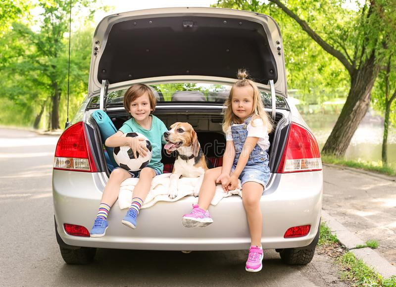 Cute children with dog sitting in car trunk royalty free stock image