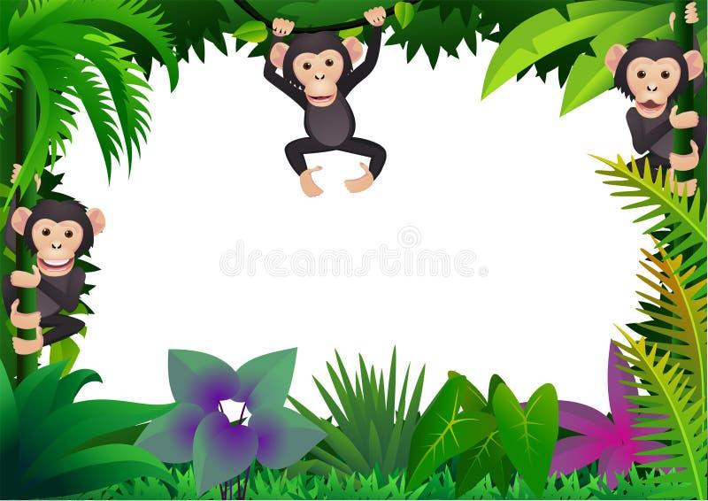 Cute Chimpanzee In The Jungle Stock Photo