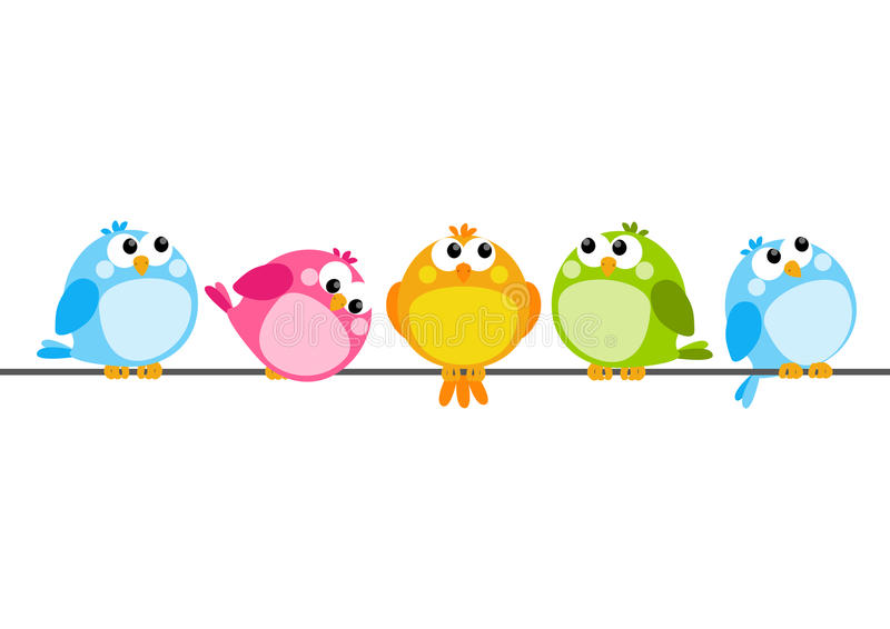 Cute color birds vector illustration