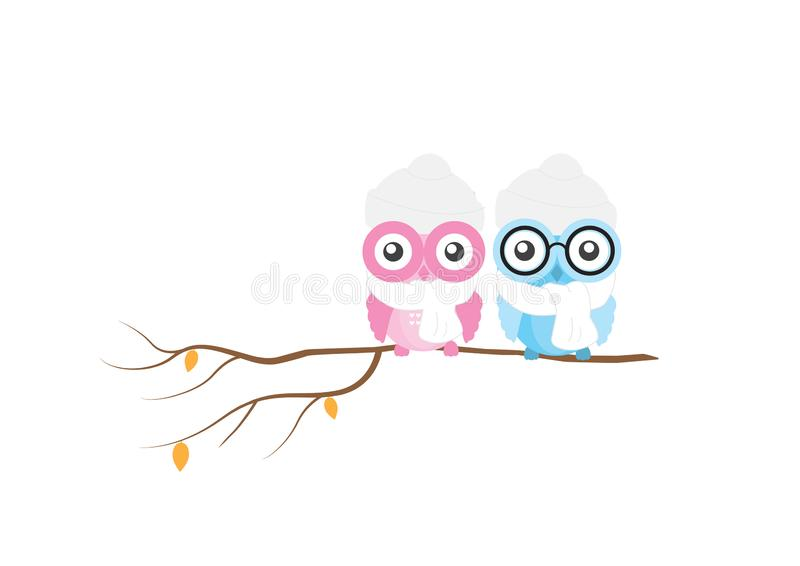 Cute colorful owls on branch in winter, vector isolated on white background, Kids Wall decor royalty free illustration