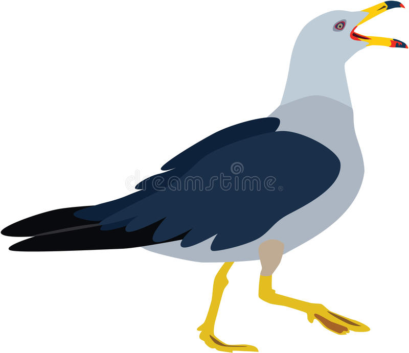 Cute colorful seagull vector stock illustration