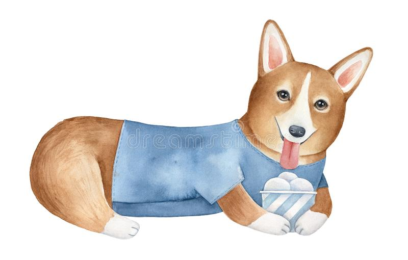 Cute corgi dog character holding paper cup with ice cream. royalty free stock photography