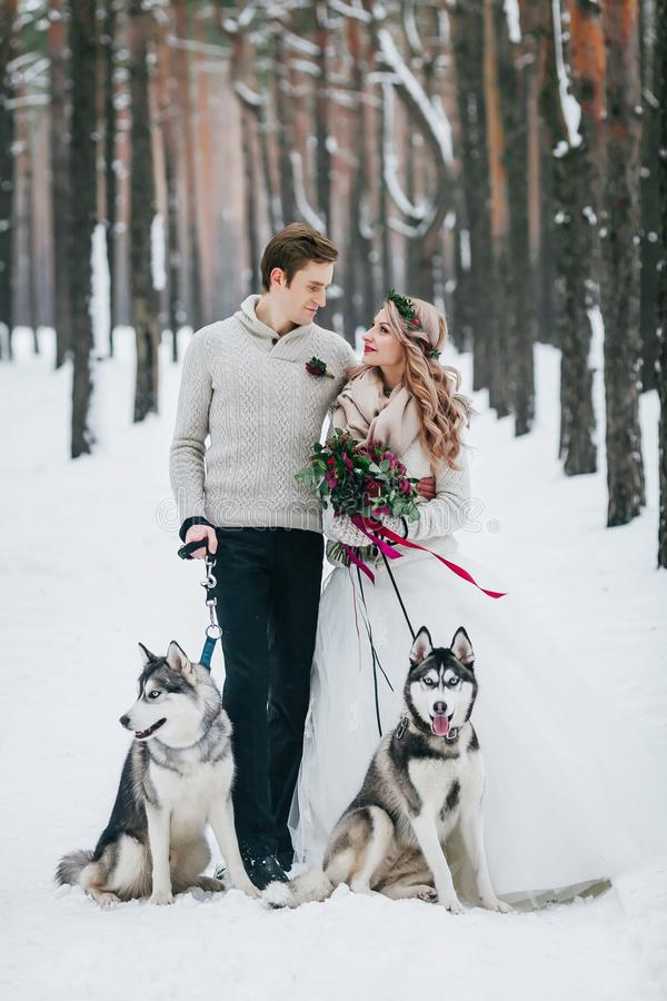Cute couple with two siberian husky are posed on background of snowy forest. Winter wedding. Artwork. Copy space stock images