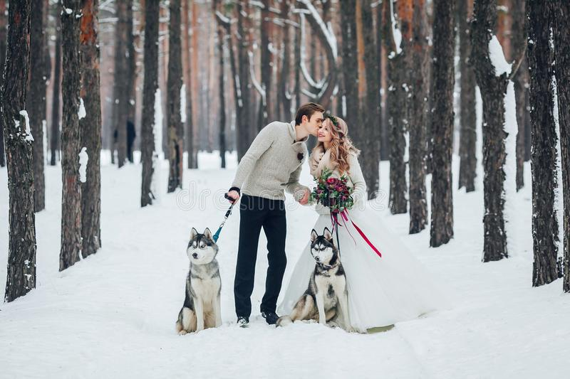 Cute couple with two siberian husky are posed on background of snowy forest. Winter wedding. Artwork. Copy space royalty free stock photo