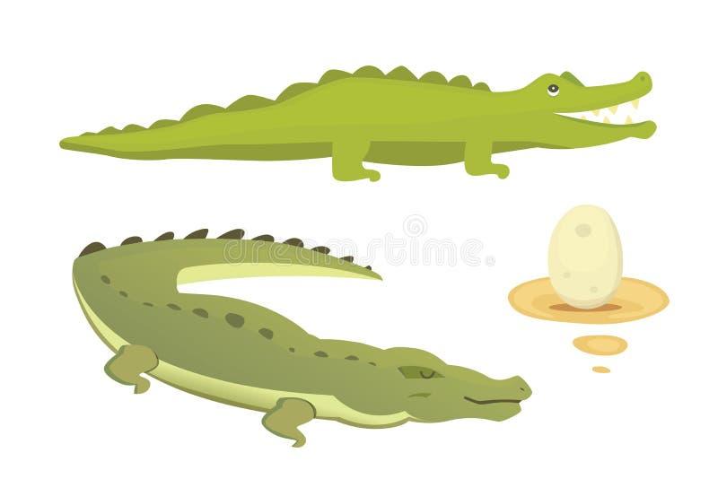 Cute Crocodile set. Aligator vector cartoon illustration royalty free illustration